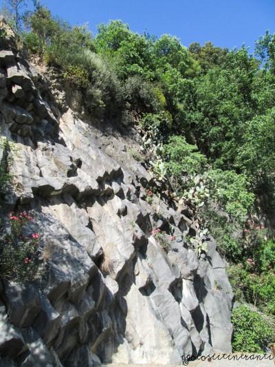 Basalti colonnari delle Gole dell'Alcantara