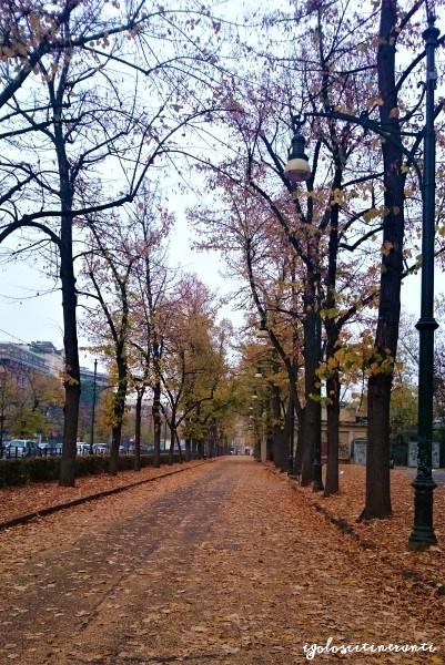 Parco del Valentino in autunno