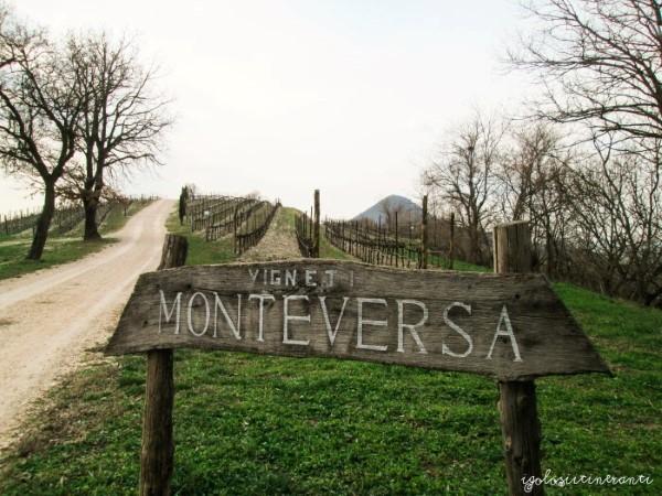 ingresso azienda Monteversa