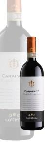 Vino Sagrantino - Carapace Lunelli