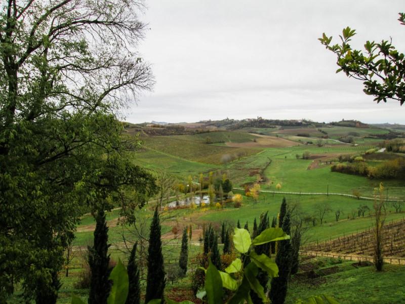 I vini del Monferrato: degustazione e visita della Tenuta Santa Caterina