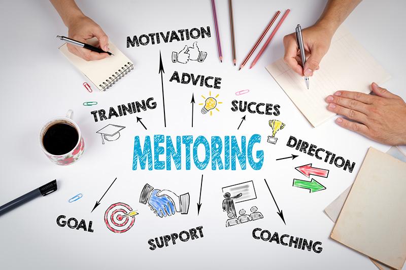 Coach VS mentor, ¿qué los diferencia en una startup? - El argumento del  capital