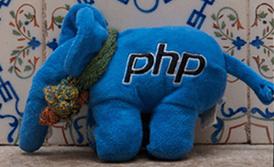 Cайты пишут на PHP (в основном)