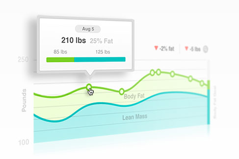Fitbit Aria Statistik