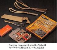 siebold-surgery-x04