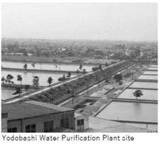 Water M- Meiji 12.JPG