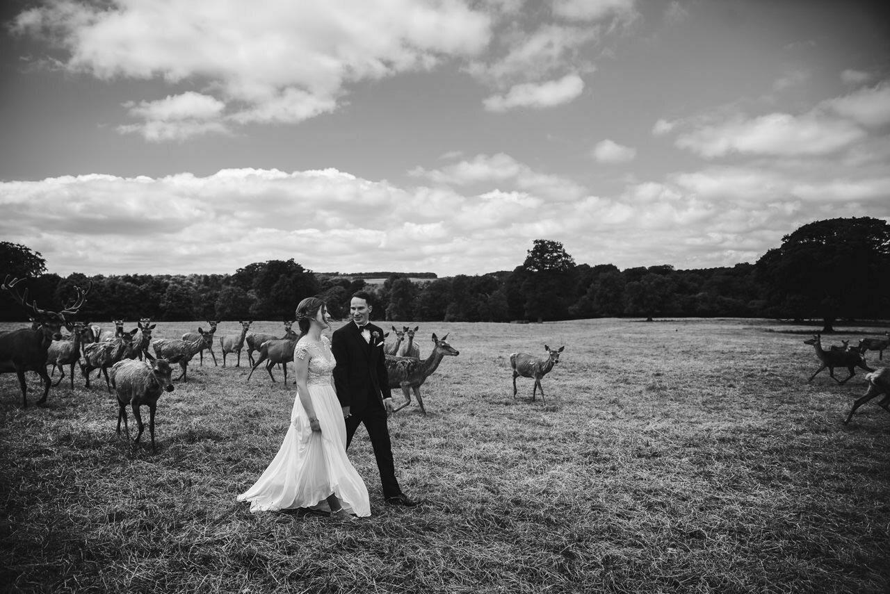 Sledmere House -Wedding  Photography Yorkshire 83