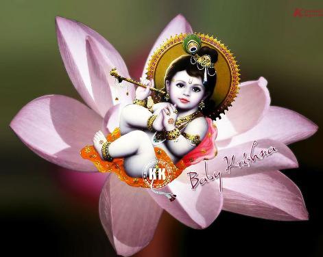 sri krishna jayanthi celebrations