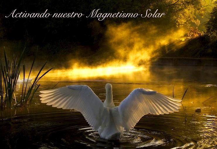 solar sun SP