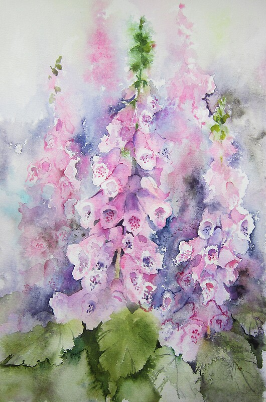 Foxgloves By Artbyrachel Redbubble