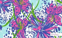 Lilly Pulitzer: Framed Prints | Redbubble