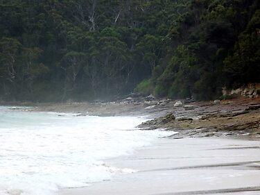 Nelson's Beach
