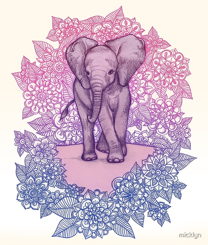 Cute Baby Elephant In Pink Purple Amp Blue By Micklyn