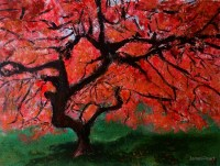 """""""Japanese Maple Tree Red Pink Leaves Contemporary Acrylic ..."""