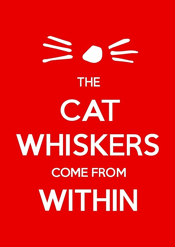 Dan And Phil Quotes Wallpaper The Cat Whiskers Come From Within Wall Art Redbubble