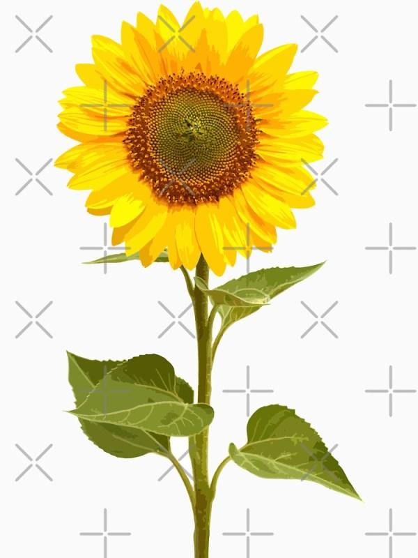"""sunflower stem"" unisex t-shirt"