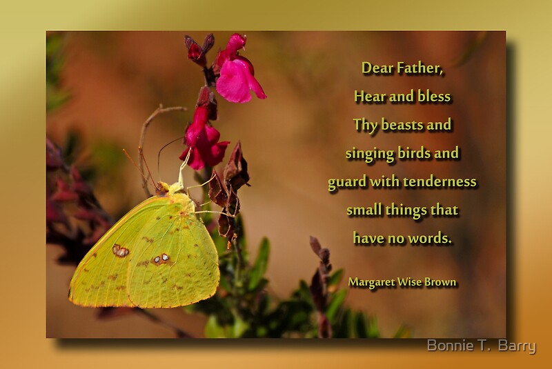 Nature Lovers Prayer by Bonnie T Barry  Redbubble