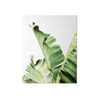 """""""Banana leaves,Tropical leaves, Green leaves, Leaf, Modern ..."""