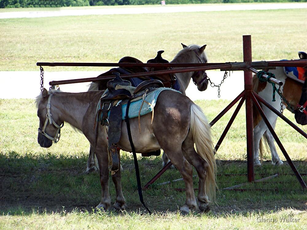 Pony Ride by Glenna Walker  Redbubble