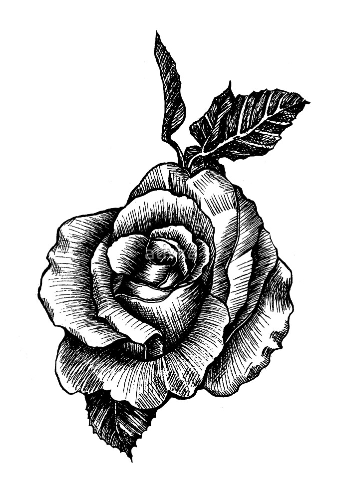 Dibujo De Rosa Del Tatuaje En Blanco Y Negro De Ativka Redbubble