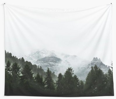 Foggy trees, forest and mountain by cadinera