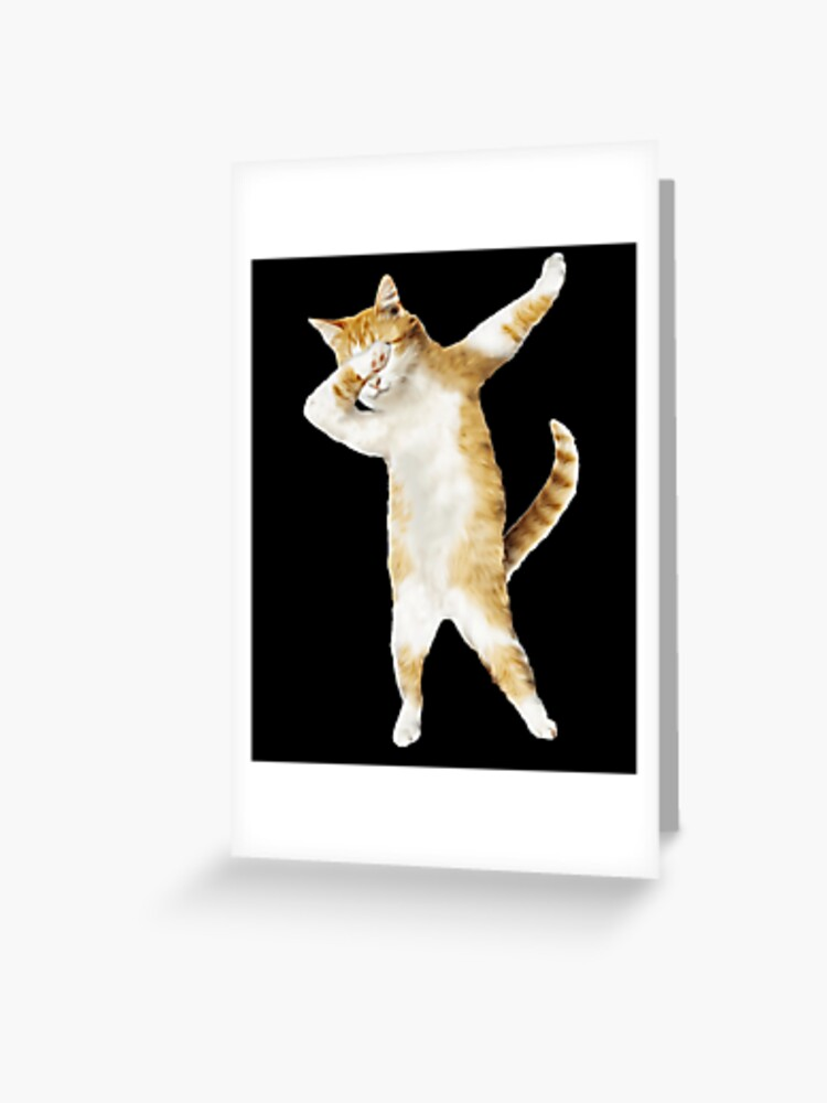 dabbing cat kitten funny