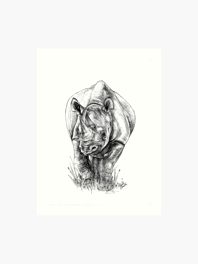 black rhino big 5