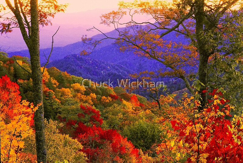Great Smoky Mountains Fall Iphone Wallpaper Quot Silence Must Be Heard Quot By Chuck Wickham Redbubble
