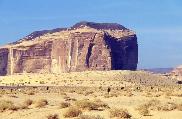 """desert landscape north of al ula"