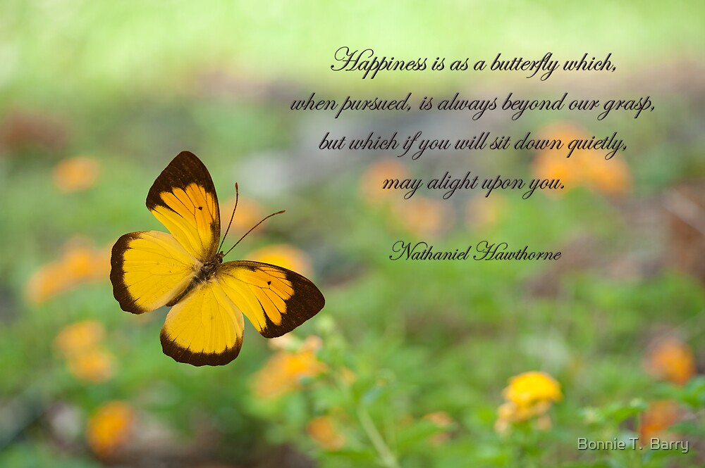 Colourful Wallpapers With Quotes Quot Happiness Is Like A Butterfly Quot By Bonnie T Barry