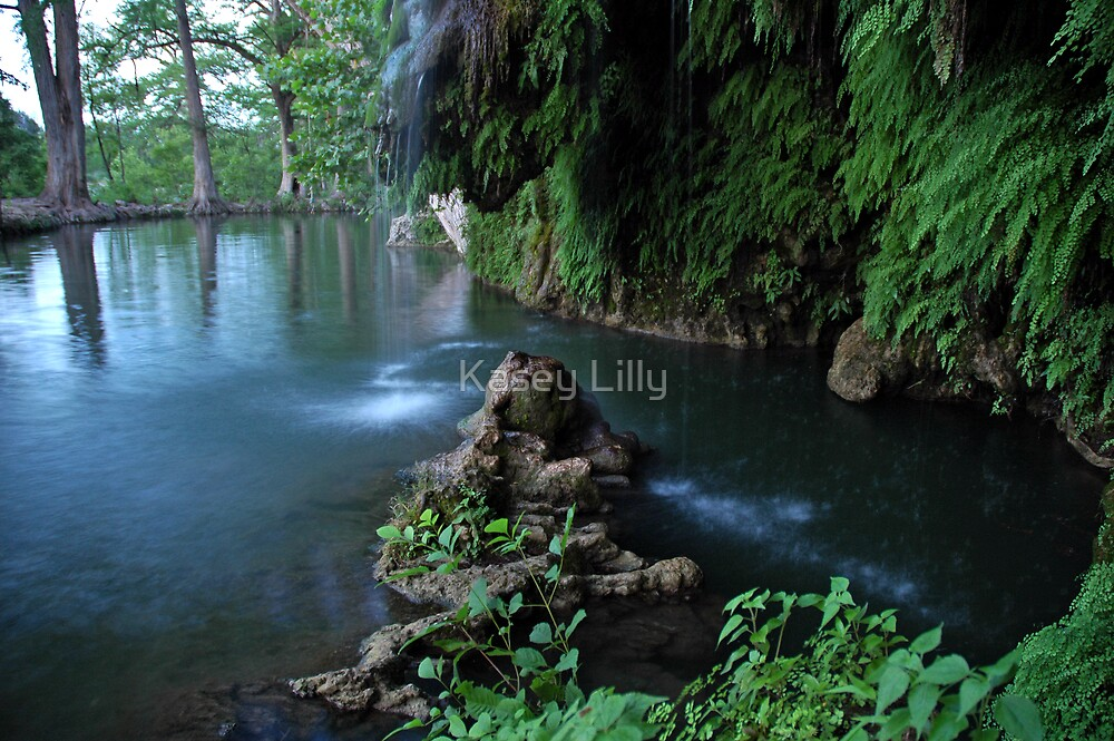 Krause Springs TX By Kasey Lilly Redbubble
