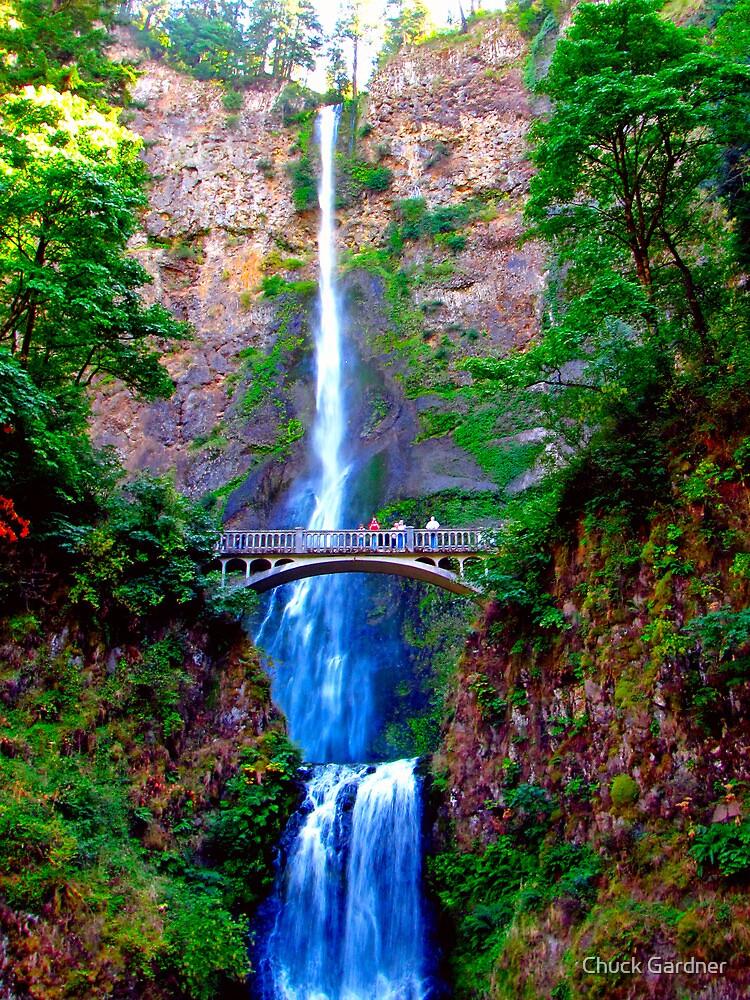 Benson Footbridge Across the Multnomah Falls  by Chuck