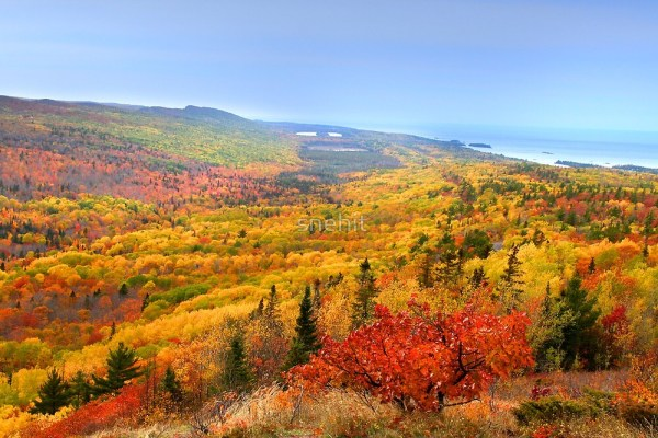 """""""beautiful autumn landscape"""""""