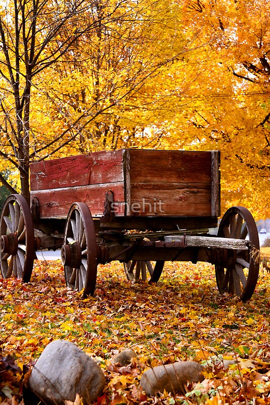 Rustic Fall Wallpaper Quot Antique Wagon And Autumn Colors Quot By Snehit Redbubble