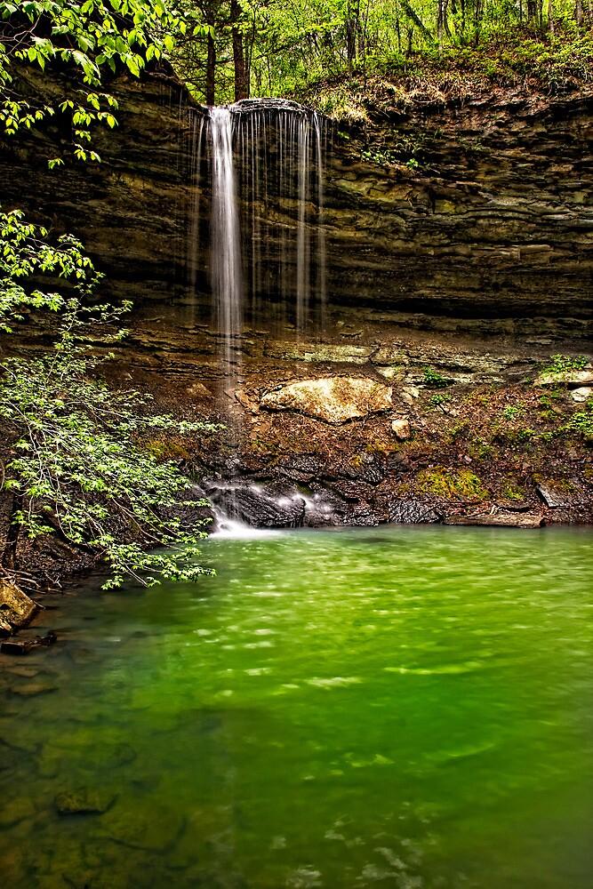 Green Reflection  Rattlesnake Falls  Ozark National