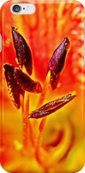 Five Stamen Day Lilly by 32DARTS