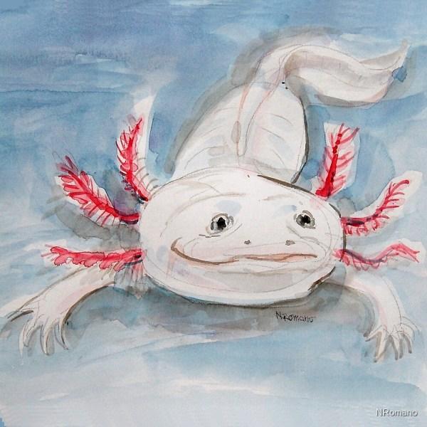 """axolotl In Water"" Nromano Redbubble"