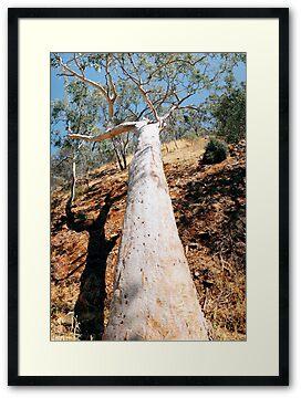 Photographs around Adelaide, South Australia, by Stephen Mitchell