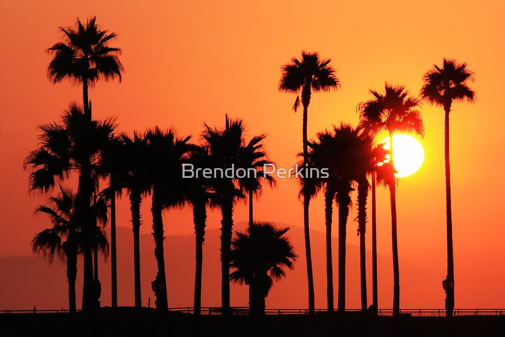 California Sunshine Huntington Beach California By