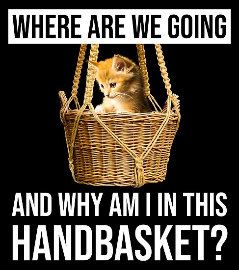 "Where Are We Going & Why Am I In This Handbasket?"" Poster by ..."