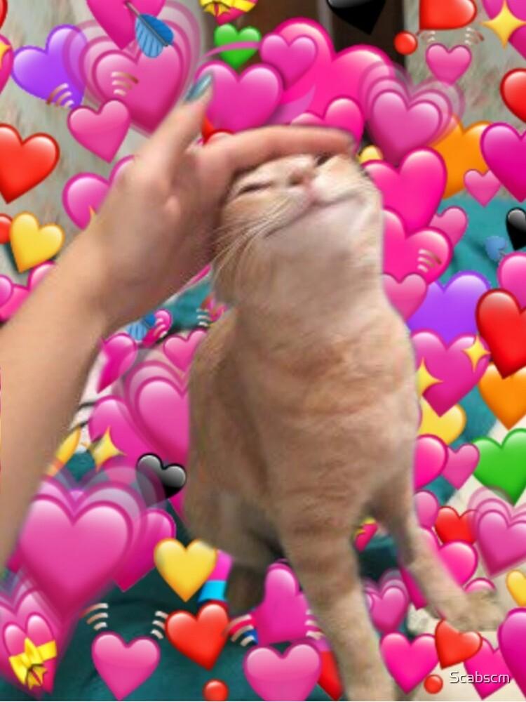 Cat Hearts Meme : hearts, Meme