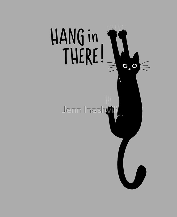 Funny Hang In There : funny, there, Funny, Black, Hanging, There!, Humorous, Kitty