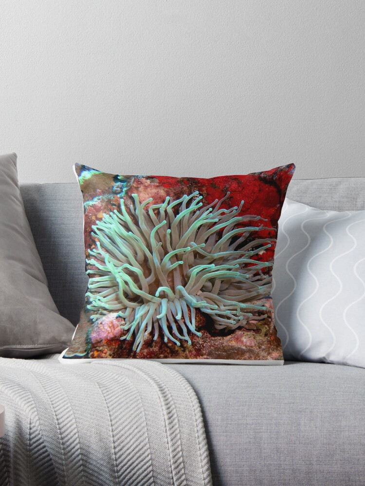 giant green sea anemone feeding near red coral reef wall throw pillow by scubagirlamy redbubble