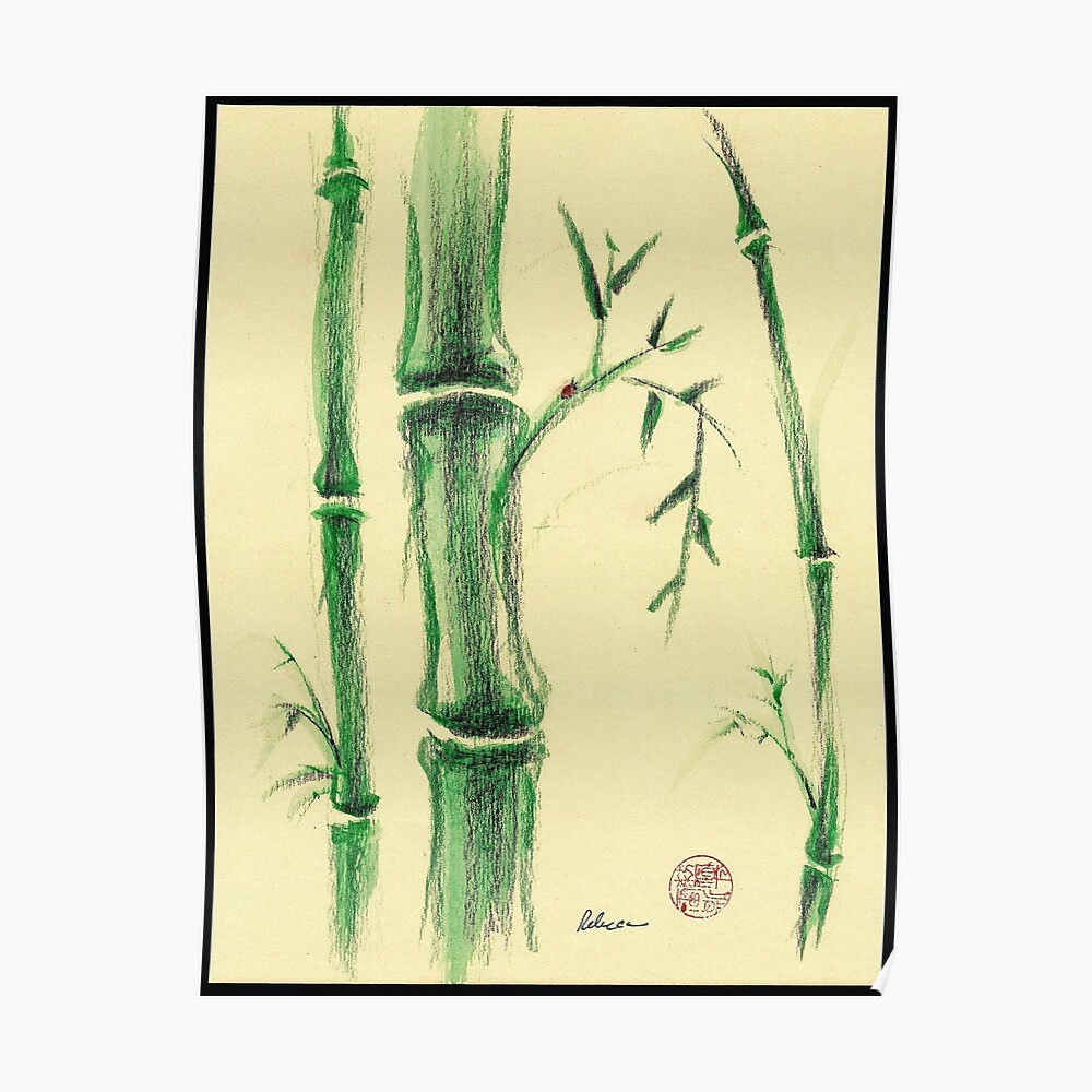 impression artistique happiness zen bamboo prisma pencil and watercolor drawing par tranquilwaters redbubble
