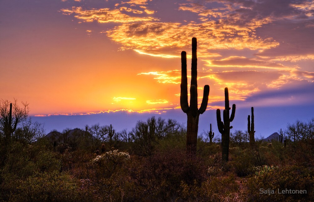 Southwest Desert Sunset By Saija Lehtonen Redbubble