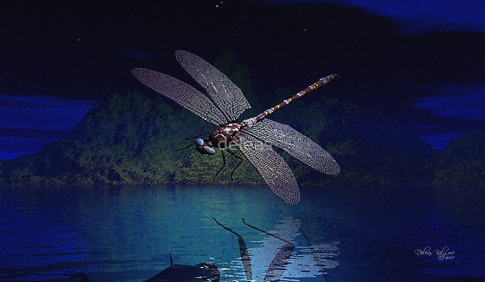 Dragonfly Reflections at Night by deleas  Redbubble