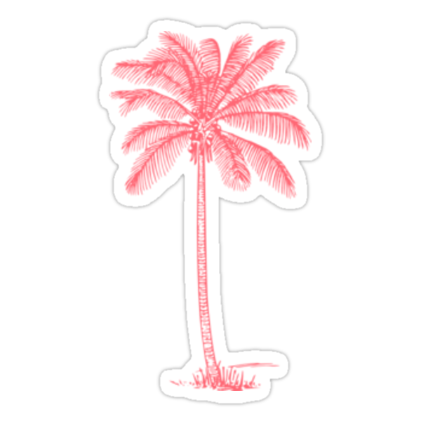 Pink Palm Tree Stickers by hblock13  Redbubble
