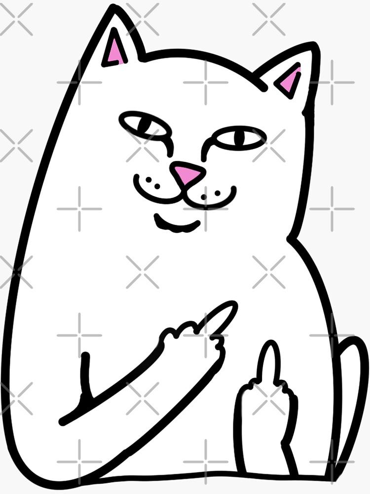 Cat Holding Up Middle Finger : holding, middle, finger, Middle, Finger, Gifts, Merchandise, Redbubble