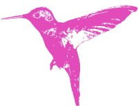 """Hummingbird Pink"" Stickers by rikki57 | Redbubble"