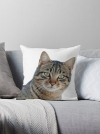 """Cat face"" Throw Pillows by tvdesigns21 